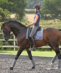 The right response Follow Tina Sederholm's tips for getting a lazy horse listening and going forward