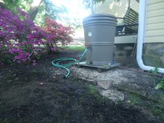 watering the lawn :: rain barrel for watering :: Tips for Watering the Lawn :: Planting and Watering Grass Seed Lawn Fertilizer, Rain Barrel, Grass Seed, Garden Hose, Herb Garden, Lawn Care, Planting, Porch, Seeds