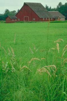 Hobby Farm Tax Deductions