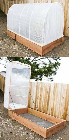serre jardin plastique bois idée