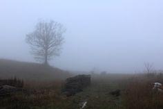 La nebbia di mattina nel primo giorno del nostro blog Tour.   #terredisiena #viafrancigena
