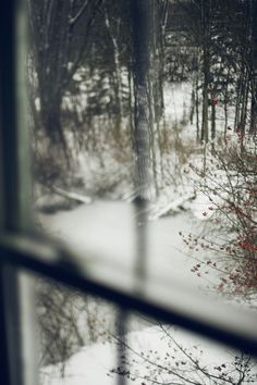 Winter view# snow through the window Looking Out The Window, Through The Looking Glass, Winter Snow, Winter Time, Winter Berries, Winter Green, Winter Magic, Winter Christmas, Bar Berlin