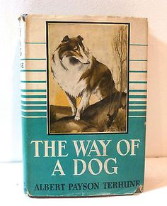 """The Way of a Dog"" by Albert Payson Terhune 1932 Collie HCDJ book"