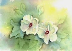 View From the Oak: Hibiscus - Challenge