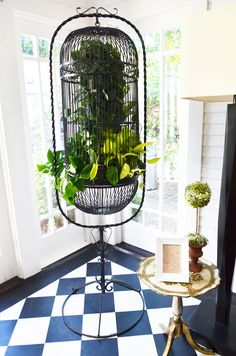 birdcage as plant holder