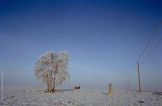 Miina Savolainen, voimauttava valokuva