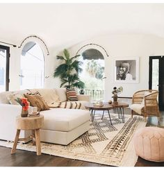 Neutral living rom with palm