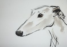 Spanish Greyhound (Galgo), watercolours on paper, 17 x 24 cm, www.arte-canino.de