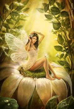 """pixiewinksfairywhispers:    """"If we opened our minds to enjoyment, we might find tranquil pleasures spread about us on every side. We might live with the angels that visit us on every sunbeam, and sit with the fairies who wait on every flower.""""  ~Samuel Smiles"""