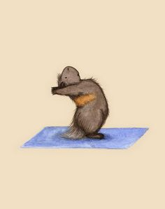 Yoguineas - Standing Back Bend Art Print