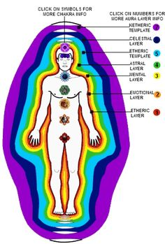 The Auras ..  so in all this energy healing stuff........ Things you need to know going into in.. The Chakras.. The Meridians.. and the Aura.. here's an image of the auras.. Ps.. I learned how to see the 1st Aura!! It's  super easy.. find a mirror stair at your forehead and you will start to see your at least your 1st Aura above your head..  you can do it with any thing as well .. it just cool to work on your self 1st.