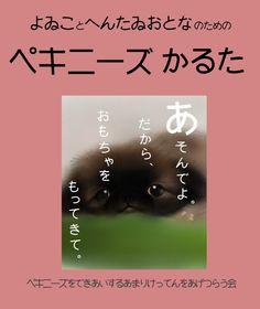 My works Pekingese portraits 愛犬ペキニーズと、 そのお友達の似顔絵・肖像画. http://ameblo.jp/mamijiro0922/