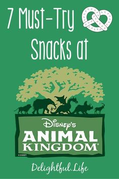 We've rounded up the best snacks at Disney's Animal Kingdom, for your next Walt Disney World vacation!  disney trip planning   disney dining   disney tips