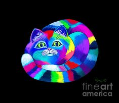 A colorful rainbow cat