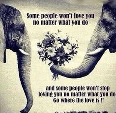 Some people won't love you no matter what you do. Some people won't stop loving you no matter what you do. Go where the love is! Great Quotes, Quotes To Live By, Me Quotes, Inspirational Quotes, Quotes Pics, Cliche Quotes, Basic Quotes, Quick Quotes, Motivational Videos