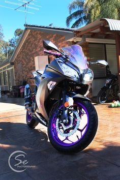 Kawasaki Ninja 300. Custom Bike in Black & Purple [saraaghelise photography]