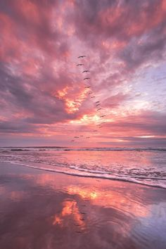 Wild geese fly in beautiful red clouds photography nature clouds,clouds photography picture beautiful,beach nature colour. Beach Aesthetic, Pink Aesthetic, Beach Wallpaper, Wallpaper Backgrounds, Types Of Photography, Landscape Photography, Aesthetic Backgrounds, Aesthetic Wallpapers, Wallpaper Fofos