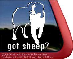 got sheep   Australian Shepherd Vinyl Decal #nickerstickers#haulinauss #vinyldecal #australianshepherds#australianshepherddecal