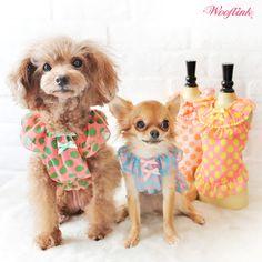 WOOFLINK - Hip designer dog clothes: BABY DOLL 2 ♥