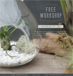 FREE Workshop: Terrariums and Miniature Gardens. Click the image to register online or call 419.865.6566