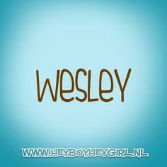 Wesley (Voor meer inspiratie, en unieke geboortekaartjes kijk op www.heyboyheygirl.nl)