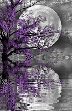 ^^ I really appreciate this beautiful moon with the reflection on gentle rippling water. Beautiful Nature Wallpaper, Beautiful Moon, Beautiful Landscapes, Beautiful Scenery, Beautiful Space, Simply Beautiful, Beautiful Flowers, Beautiful Things, Fantasy Landscape