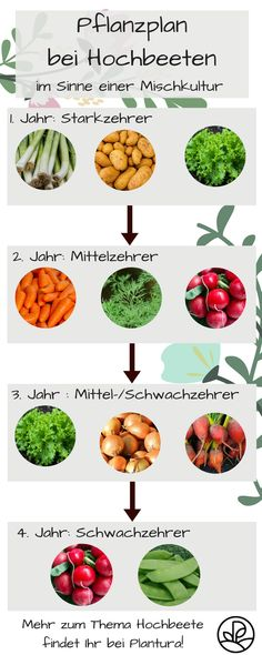 Planting raised beds: planting plan, mixed culture & green manuring-Hochbeet bepflanzen: Pflanzplan, Mischkultur & Gründüngung Raised bed planting plan: what you should consider when planting plants in the raised bed. Garden Care, Garden Soil, Garden Seeds, Plants For Raised Beds, Raised Garden Beds, Garden Types, Backyard Plants, Planting Plants, Backyard Ideas