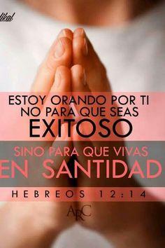 """""""Seguid la paz con todos, y la santidad, sin la cual nadie verá al Señor."""""""
