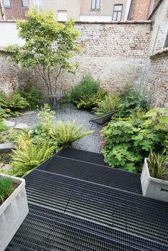 Garden Screening Ideas - These 7 garden screening ideas will give you the privacy you desire, yet not make your garden seem like an enclosed citadel. Urban Garden Design, Small Garden Design, Small Gardens, Outdoor Gardens, Landscape Architecture, Landscape Design, Contemporary Garden, Garden Spaces, Shade Garden