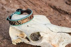 Personalized Dog Collar Custom Dog Collar Leather Dog Collar Navajo Dog Collar Turquoise Dog Collar Rhinestone Dog Collar