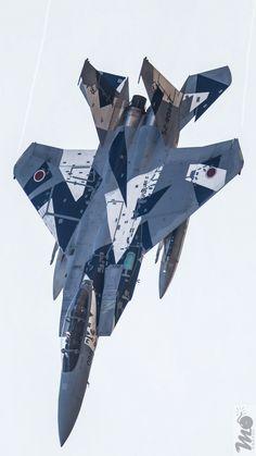 F 15 Eagles japan