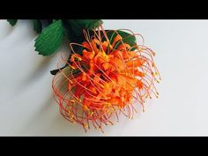 ABC TV | How To Make Leucospermum Paper Flower From Crepe Paper - Craft ...