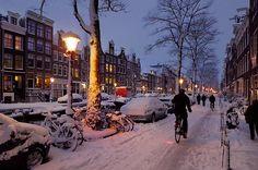 #beautiful #winter #lights