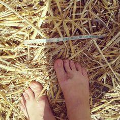 We waren te gast met de Geluksroute op Shoeless-festival, er werd zo heftig gedanst dat armbandjes in de stro waren beland.