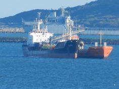 Oil tankers sitting in Weymouth bay Weymouth Bay, Weymouth Dorset, Tanker Ship, Oil Tanker, Bed And Breakfast, Sailing Ships, Boat, Beautiful, Boats