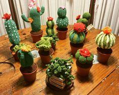"""71 Me gusta, 8 comentarios - Le mie creature  (@amymamycreations) en Instagram: """"My little creations..  I love them #amigurumi #uncinetto #creative #creativo #filoamorefantasia…"""""""