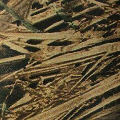 Mossy Oak Shadowgrass Vinyl by Foam Products of Tyler Fabrics
