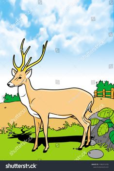 Find Mammals Animal Illustration Smooth Graphics Full stock images in HD and millions of other royalty-free stock photos, illustrations and vectors in the Shutterstock collection. Thousands of new, high-quality pictures added every day. African Image, Mammals, Deer, Moose Art, Royalty Free Stock Photos, Coloring, Smooth, Graphics, Animal