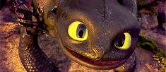 You can see hiccup in his eyes Dreamworks Animation, Animation Film, Toothless And Stitch, Toothless Night Fury, Httyd Dragons, Dragon Eye, Hiccup, How To Train Your Dragon, Dragon Trainer