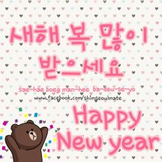 how to say happy new year in korean 새해 복 많이