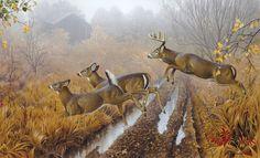 Whitetail deer - painting by wildlife artists Jerry Gadamus