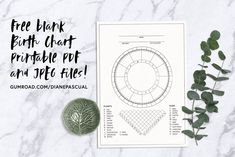 Astrology Vector Set & Birth Chart by Diane Pascual on