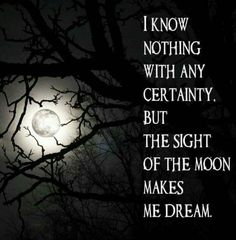 We all live and dream under the same moon Wicca, Magick, Pagan, Under The Same Moon, Moon Child, How Beautiful, Full Moon, Mother Earth, I Know