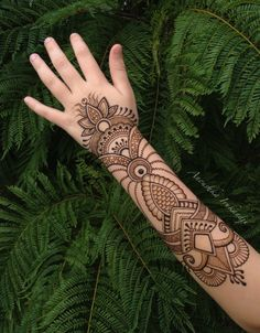 Henna in the Wild Anoushka Irukandji 2015