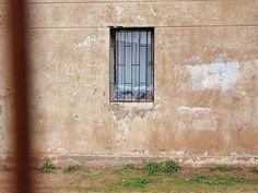 #ventana #Windows