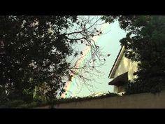 Rainbow In the Sky On February 13, 2012