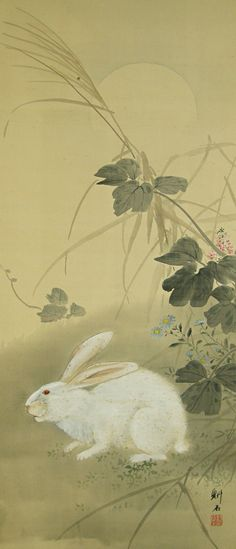 Rabbit under the Moon