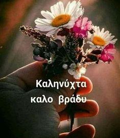 Night, Pictures, Quotes, Plants, Decor, Greek, Photos, Quotations, Decoration