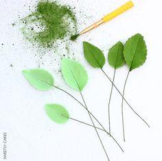 Tutoriel feuilles de roses en sucre - How to make a sugar rose leaves