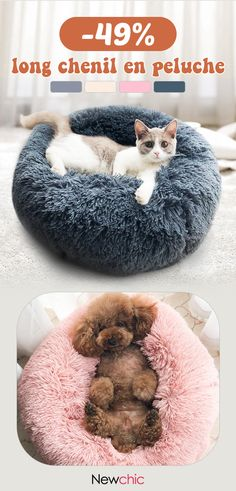- Cats - off】 Long Plush Super Soft Pet Round Bed Kennel Dog Cat Comfortable Sle. off】 Long Plush Super Soft Pet Round Bed Kennel Dog Cat Comfortable Sleeping Cusion. Animals And Pets, Funny Animals, Cute Animals, Bb Chat, Diy Dog Treats, Sleeping Dogs, Christmas Cats, Funny Christmas, Christmas Animals